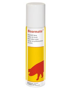 SPRAY PER VERRI BOARMATE 250ML