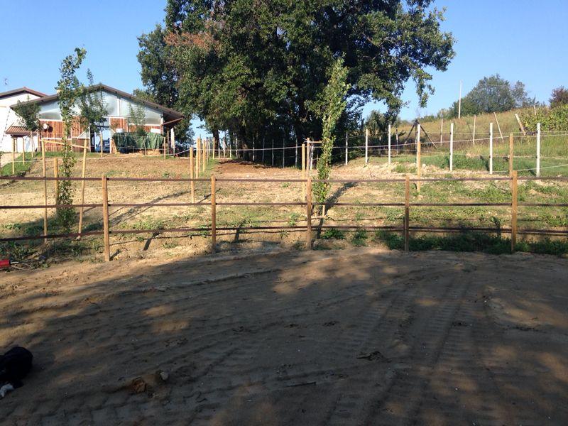 Tondino Per Cavalli.Tondino Per Cavalli Il Mondo Agrizoo Agri Zoo