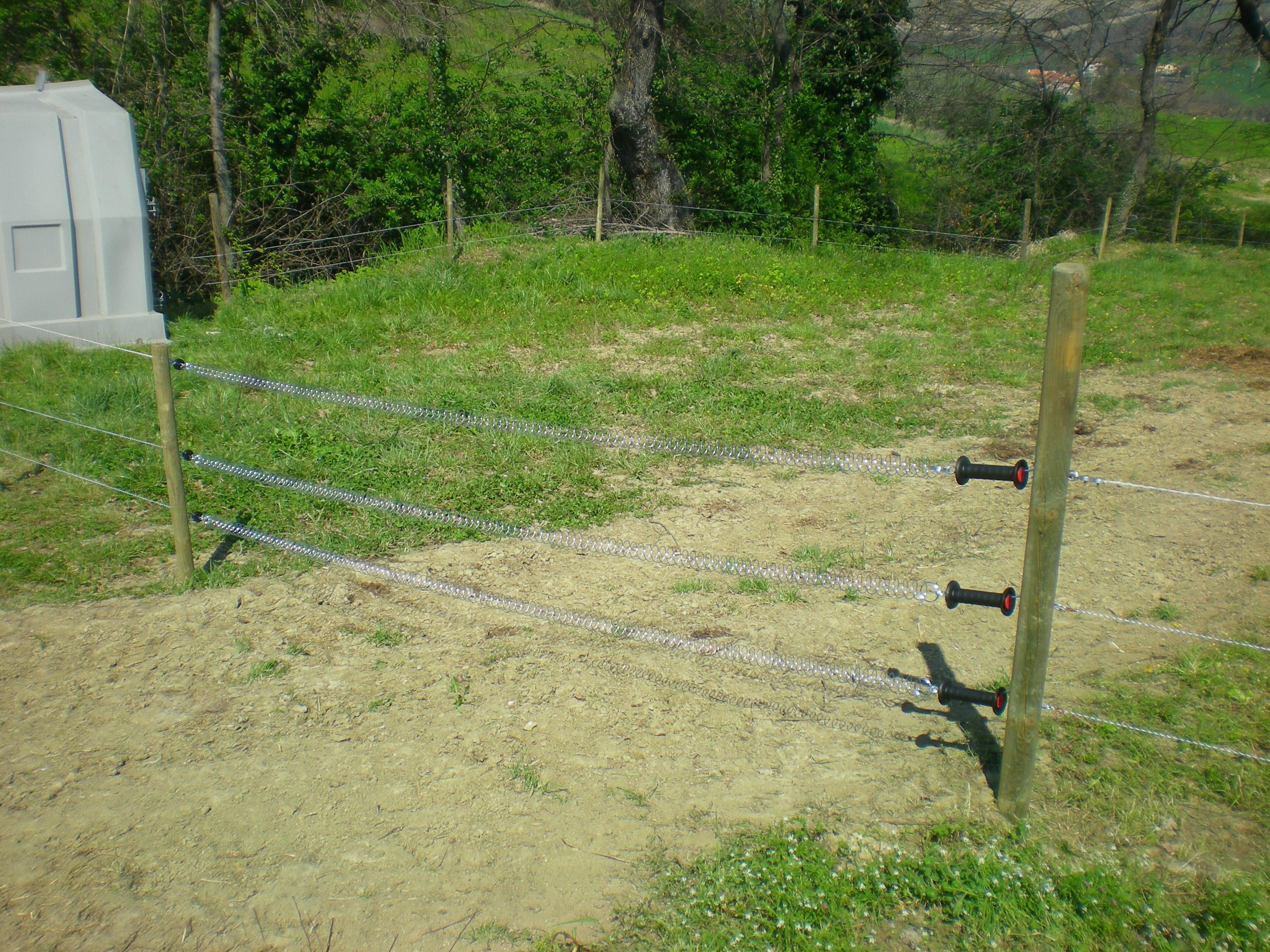 Recinto Elettrico Per Cavalli.Recinto Elettrico Il Mondo Agrizoo Agri Zoo Zootecnica
