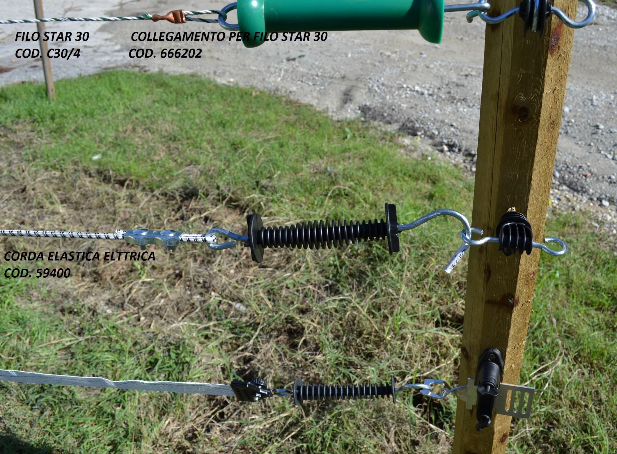 Schema recinto elettrico per cinghiali recinti elettrici for Recinzione elettrica per capre
